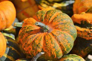 fall produce pumpkins