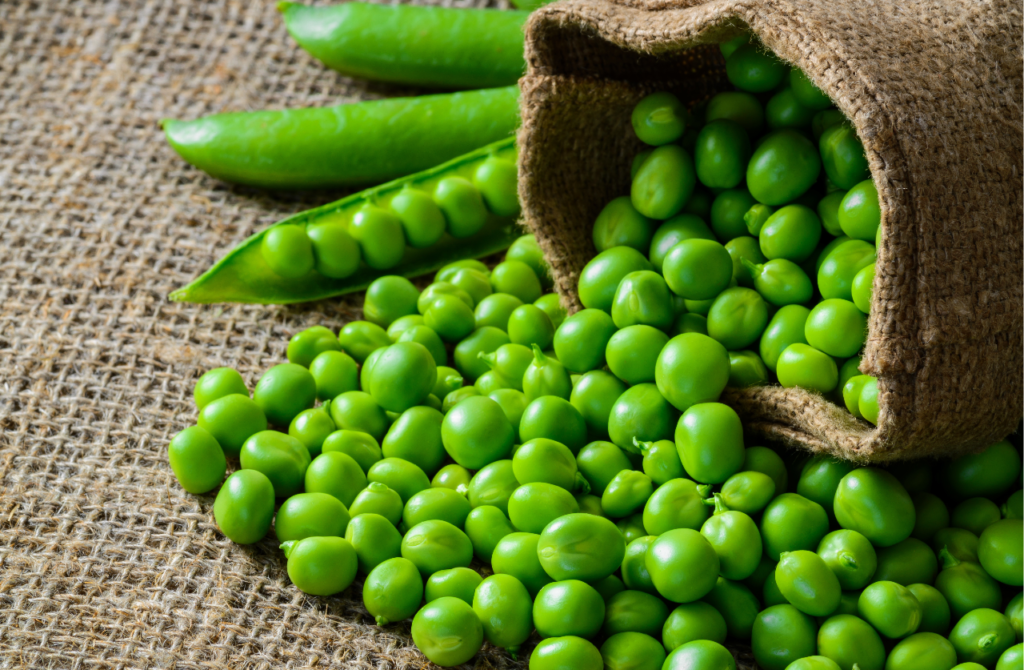 fresh green peas and pods on rustic fabric background